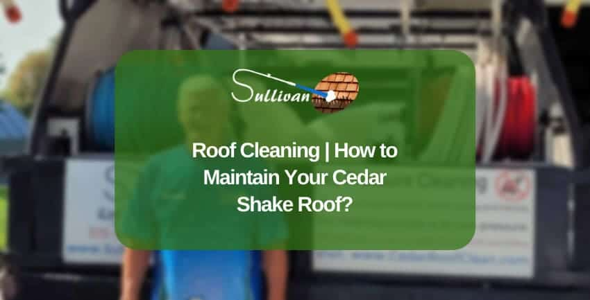 Roof Cleaning How to Maintain Your Cedar Shake Roof 850x433